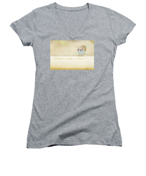 Curious Cordon Bleu Finch  Women's V-Neck T-Shirt