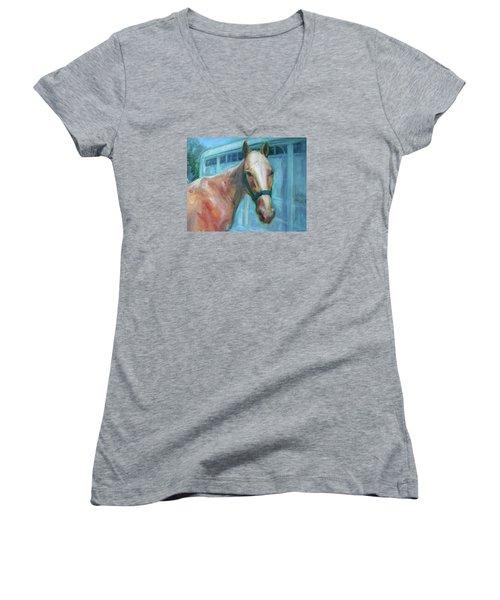 Custom Pet Portrait Painting - Original Artwork -  Horse - Dog - Cat - Bird Women's V-Neck T-Shirt (Junior Cut) by Quin Sweetman