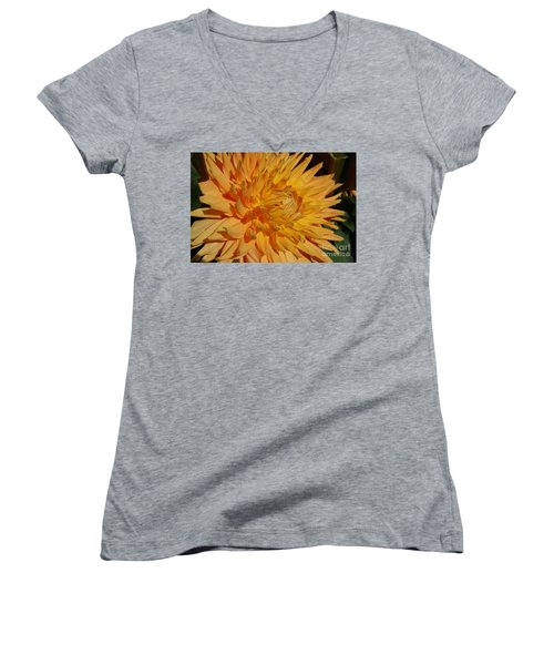 Women's V-Neck T-Shirt (Junior Cut) featuring the photograph Dahlia Xiii by Christiane Hellner-OBrien