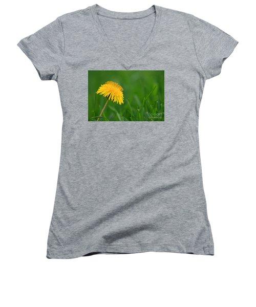 Dandelion Flower Women's V-Neck