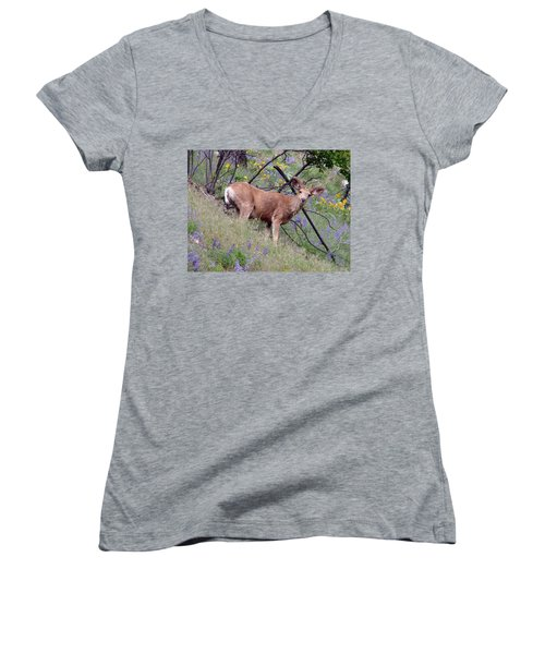 Women's V-Neck T-Shirt (Junior Cut) featuring the photograph Deer In Wildflowers by Athena Mckinzie