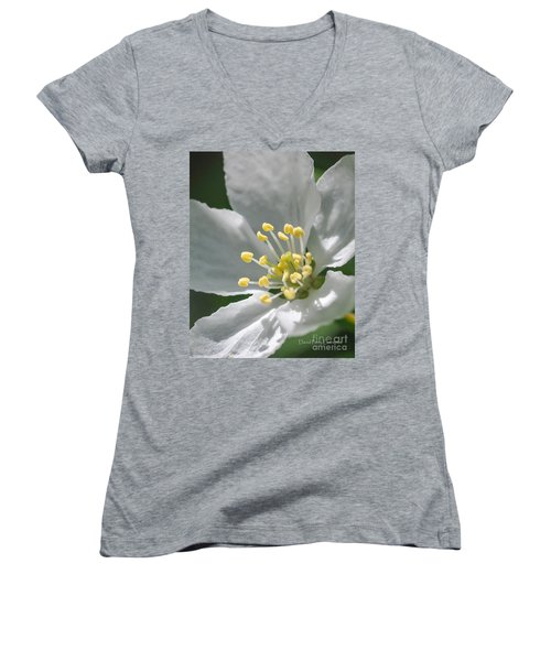 Delcate Widflower With Beautiful Stamen Women's V-Neck T-Shirt (Junior Cut) by David Perry Lawrence