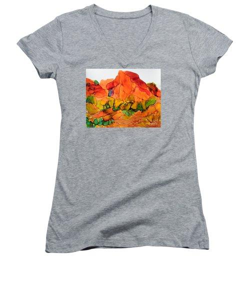 Desert Beauty 6 Women's V-Neck T-Shirt (Junior Cut) by Vicki  Housel