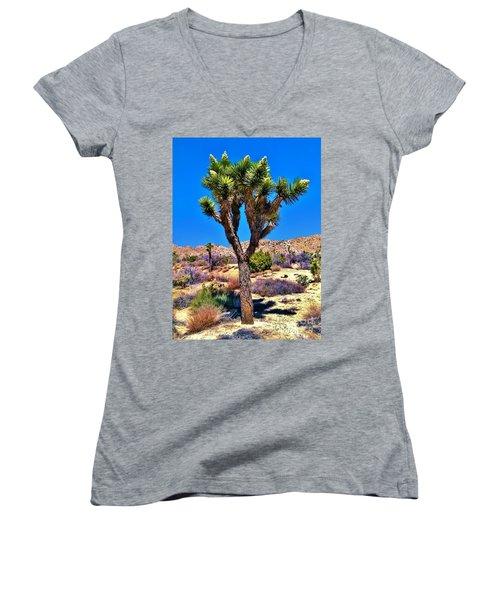 Desert Spring Women's V-Neck T-Shirt (Junior Cut) by Angela J Wright