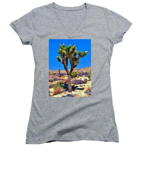 Desert Spring Women's V-Neck T-Shirt