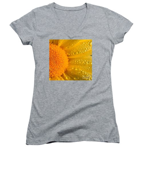 Women's V-Neck T-Shirt (Junior Cut) featuring the photograph Dew Drops On Daisy by Terri Gostola