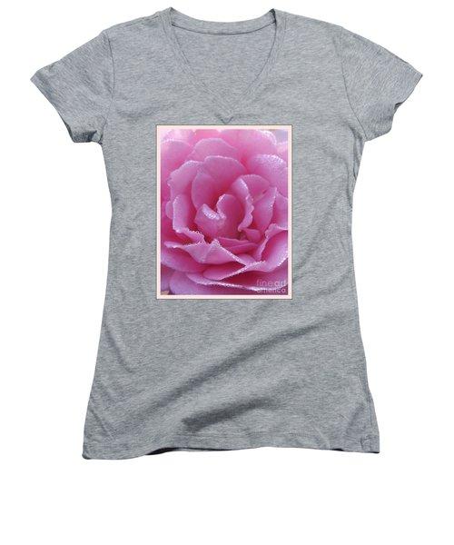 Dew Kissed Rose Women's V-Neck T-Shirt