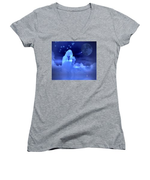Women's V-Neck T-Shirt (Junior Cut) featuring the photograph Discoveries by Joyce Dickens