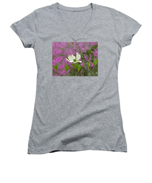 Dogwood Bloom Against A Redbud Women's V-Neck (Athletic Fit)