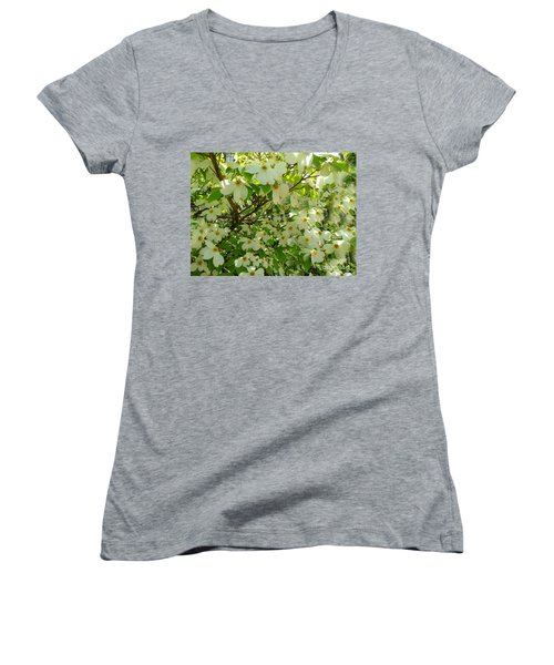 Women's V-Neck T-Shirt (Junior Cut) featuring the photograph Dogwood Kissed By The Sun by Becky Lupe