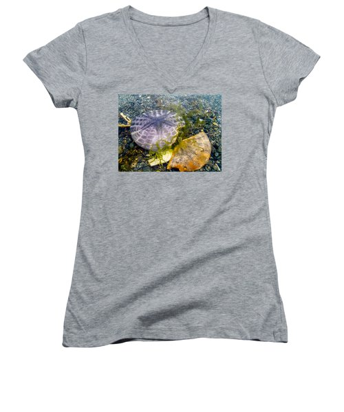 Women's V-Neck featuring the photograph Dollar And A Half by Roxy Hurtubise