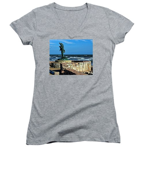 Dolphin Statue Women's V-Neck T-Shirt