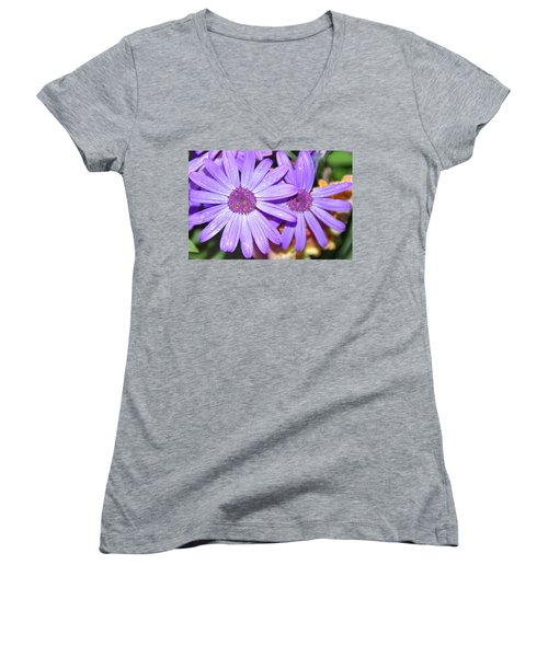 Double Purple Women's V-Neck T-Shirt