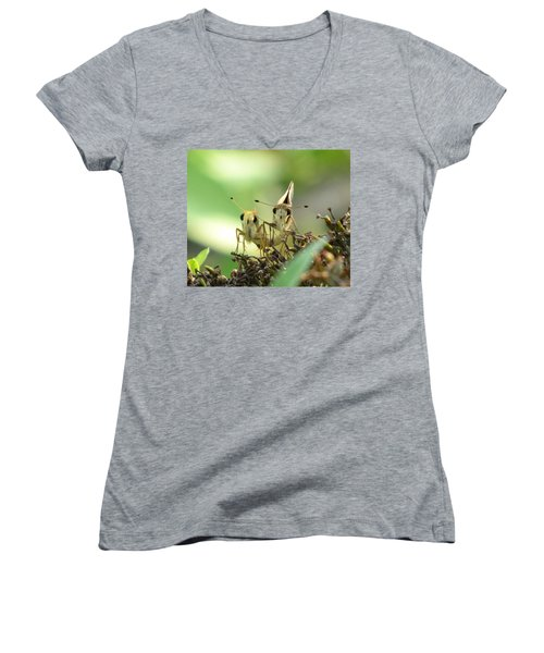 Women's V-Neck T-Shirt (Junior Cut) featuring the photograph Double Trouble by Jennifer Wheatley Wolf