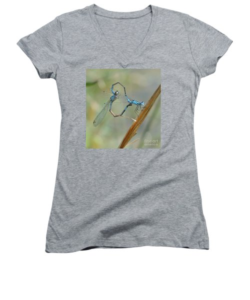 Dragonfly Courtship Women's V-Neck (Athletic Fit)