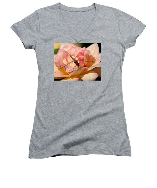 Dragonfly On A Rose Women's V-Neck