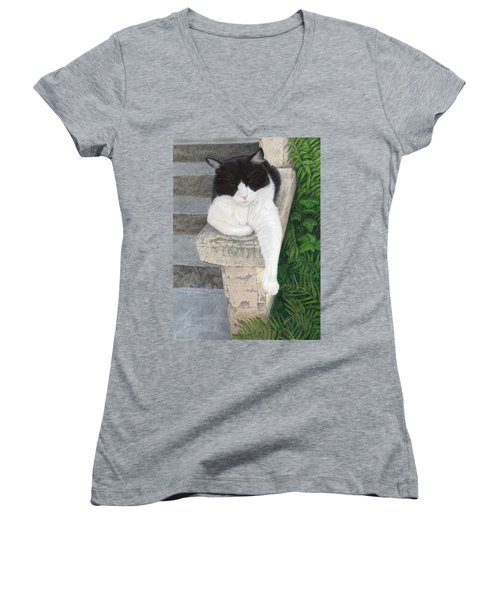 Women's V-Neck T-Shirt (Junior Cut) featuring the painting Dreaming Of Stone Lions by Pat Erickson