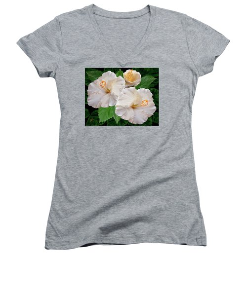 Dreamy Blooms - White Hibiscus Women's V-Neck