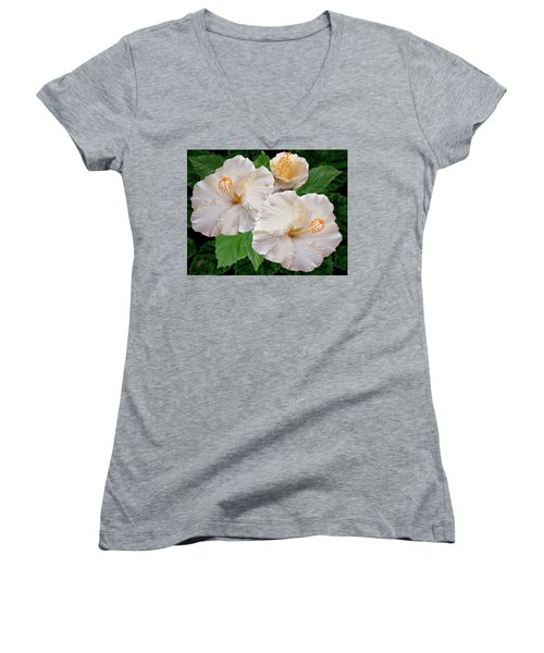 Dreamy Blooms - White Hibiscus Women's V-Neck (Athletic Fit)