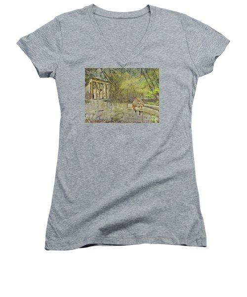 Drifter Women's V-Neck T-Shirt (Junior Cut) by Liane Wright