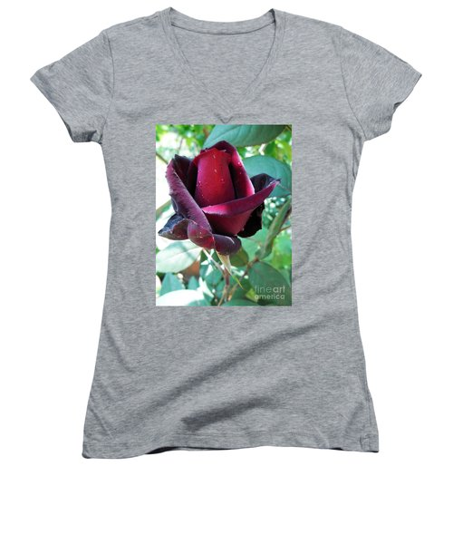 Women's V-Neck T-Shirt (Junior Cut) featuring the photograph Droplets On The Petals by Vesna Martinjak
