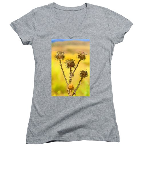 Dry Brown Thistle Women's V-Neck (Athletic Fit)
