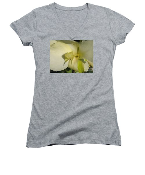 Dwarf Canna Lily Named Ermine Women's V-Neck T-Shirt (Junior Cut) by J McCombie