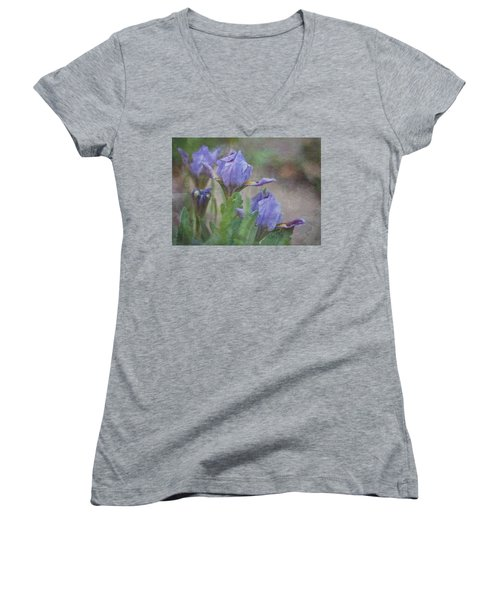 Dwarf Iris With Texture Women's V-Neck T-Shirt (Junior Cut) by Patti Deters