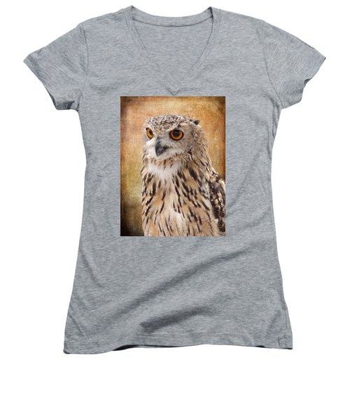 Eagle Owl Women's V-Neck T-Shirt (Junior Cut) by Lynn Bolt