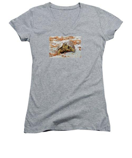Women's V-Neck T-Shirt (Junior Cut) featuring the photograph Eastern Box Turtle by Cynthia Guinn