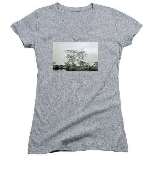 Eden Women's V-Neck T-Shirt (Junior Cut) by Shaun Higson
