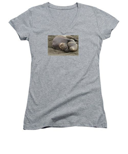 Women's V-Neck T-Shirt (Junior Cut) featuring the photograph Elephant Seal Couple by Duncan Selby