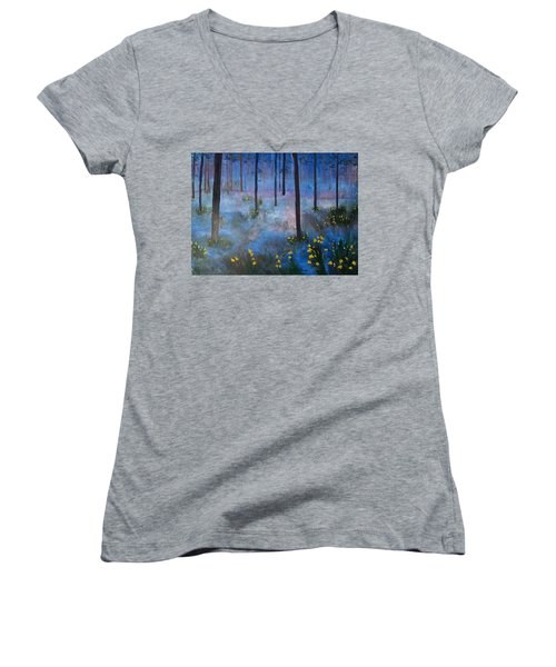 Enchantment Women's V-Neck T-Shirt