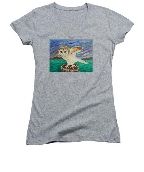 Equinox Owl Women's V-Neck T-Shirt (Junior Cut) by Victoria Lakes