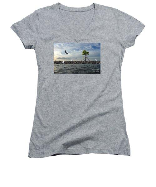 Women's V-Neck T-Shirt (Junior Cut) featuring the photograph Everglade Scene by Dan Friend