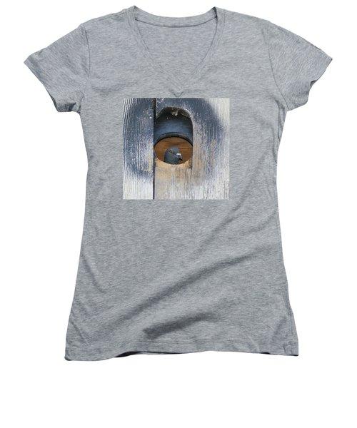 Eye Of The Eye Women's V-Neck T-Shirt