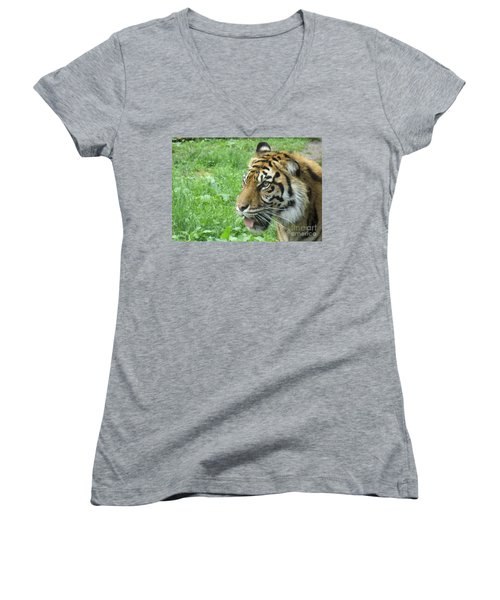 Women's V-Neck T-Shirt (Junior Cut) featuring the photograph Eye Of The Tiger by Lingfai Leung