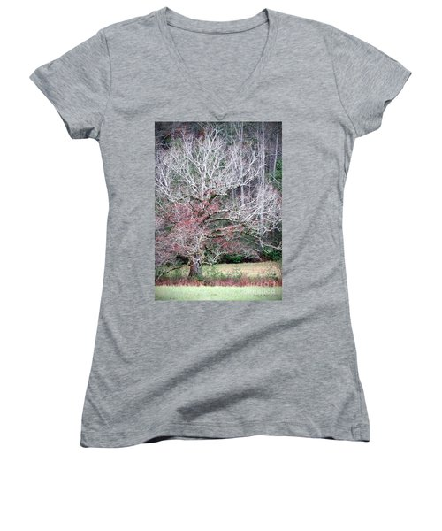 Fall At Cades Cove Women's V-Neck