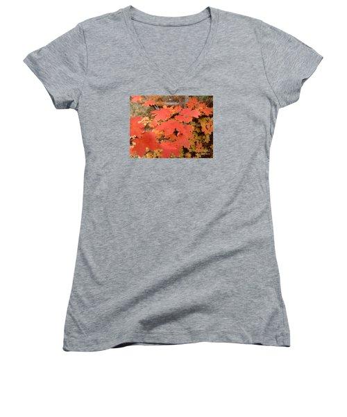 Fall Colors 6308 Women's V-Neck T-Shirt (Junior Cut) by En-Chuen Soo