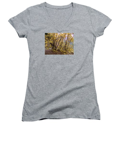 Fall Colors 6435 Women's V-Neck T-Shirt