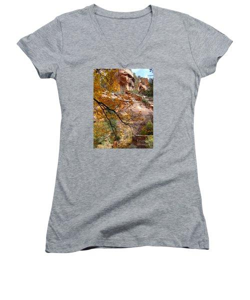 Fall Colors 6497 Women's V-Neck T-Shirt (Junior Cut) by En-Chuen Soo