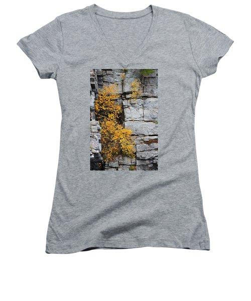 Fall Foliage Colors 01 Women's V-Neck