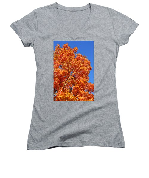Fall Foliage Colors 18 Women's V-Neck