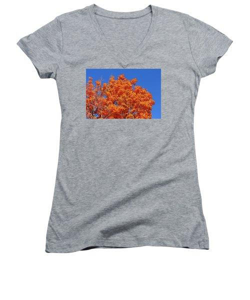 Fall Foliage Colors 19 Women's V-Neck