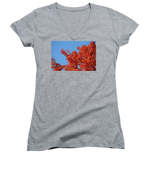 Fall Foliage Colors 20 Women's V-Neck