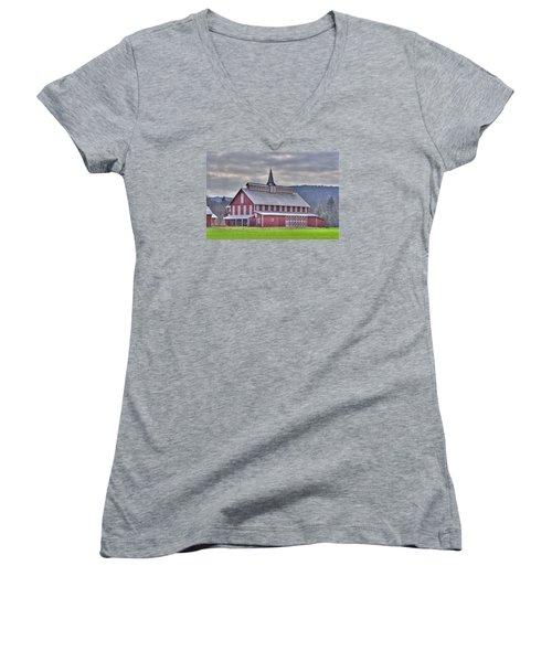 Fancy Red Barn Women's V-Neck T-Shirt (Junior Cut) by Shelly Gunderson