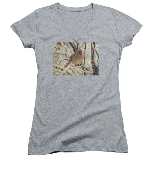 Female Cardinal In The Snow II Women's V-Neck T-Shirt (Junior Cut) by Sandy Keeton