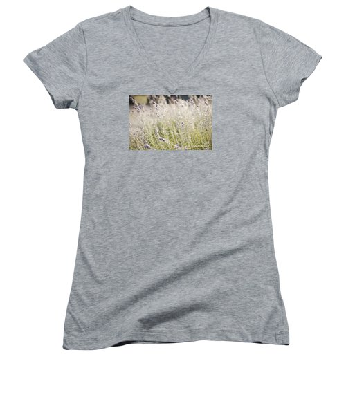 Field Of Lavender At Clos Lachance Vineyard In Morgan Hill Ca Women's V-Neck T-Shirt