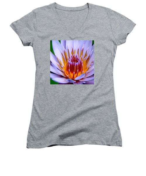 Fiery Eloquence Women's V-Neck (Athletic Fit)