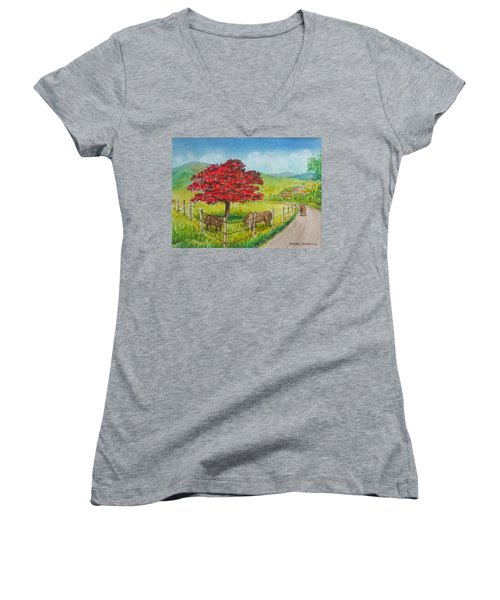 Flamboyan And Cows In Western Puerto Rico Women's V-Neck T-Shirt (Junior Cut) by Frank Hunter